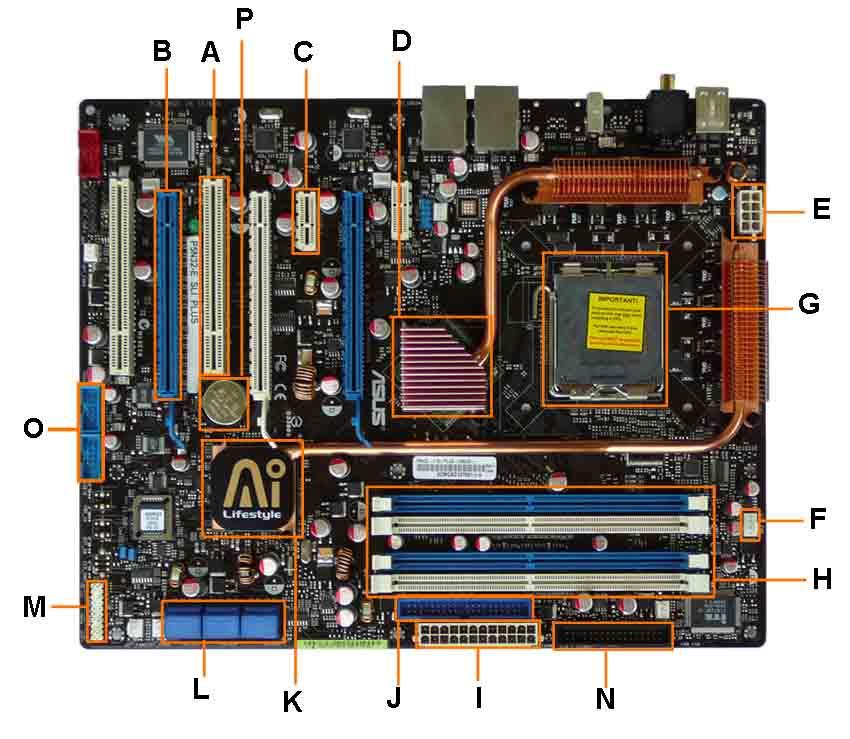 motherboard.jpg