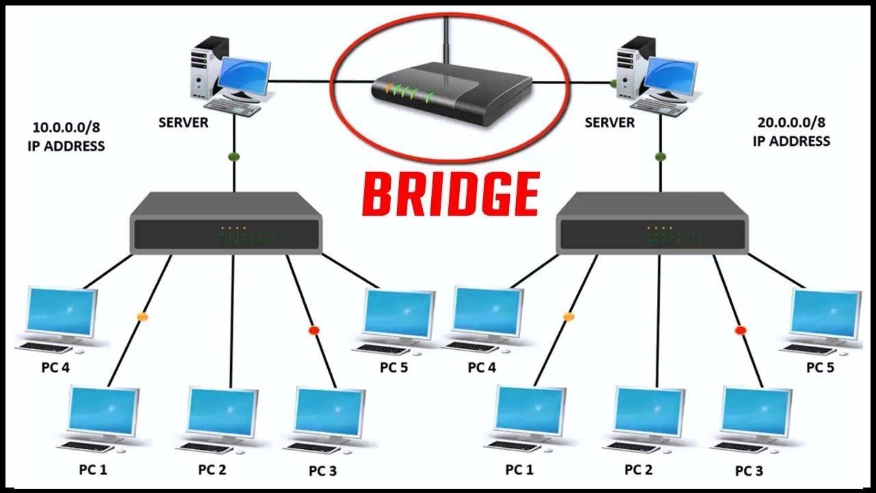 split_network_with_bridge_question.png