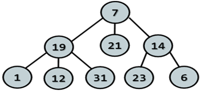 uploads/2117498888_HEIGHT_OF_TREE.png